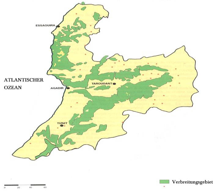 Argan tree distribution area